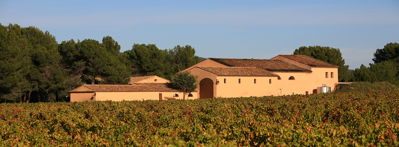 Vignoble de la Commanderie de la Bargemone à Saint CannatBouches du Rhône (13) - France