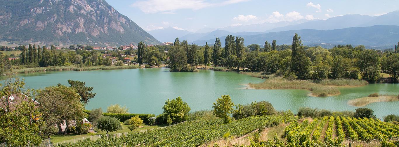 Lac Saint André, Les Marches, Alpes, France